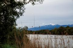 Parc Natural Albufera