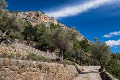 Castell d'Alaró